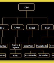 business structure template